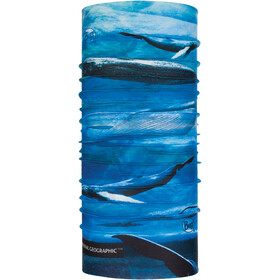 Buff National Geographic Coolnet UV+ Neckwarmer blue whale